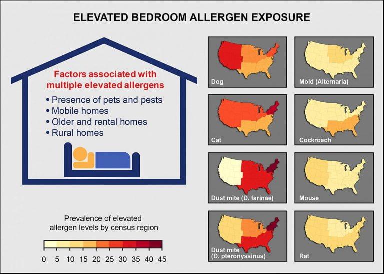 allergen testing in my home nj